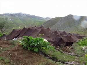 ساختار چادر برزنتی عشایری