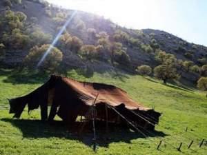 ستون سیاه چادرهای برزنتی عشایری